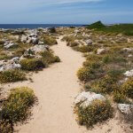 menorca walking trail