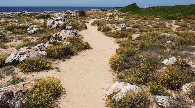 menorca walking trail